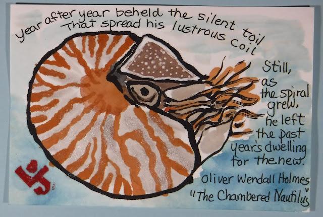the chambered nautilus