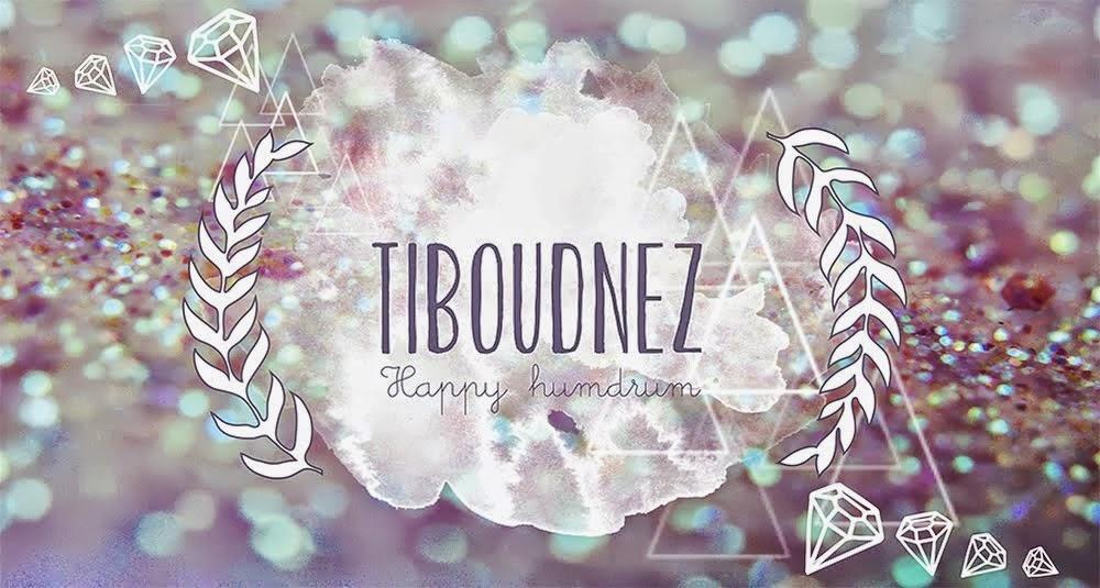 http://tiboudnez.blogspot.fr/