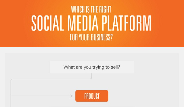 Image: Which is the Right Social Media Platform For Your Business?