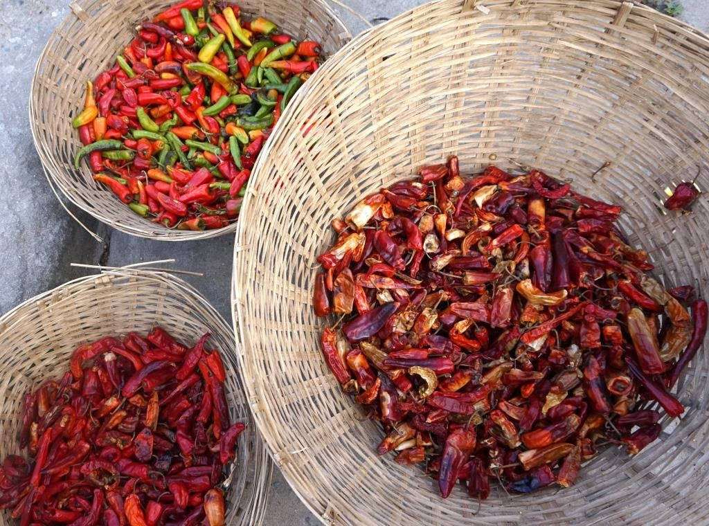 chilli of all types
