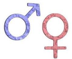 Ciri-ciri Pubertas pada Laki-laki dan Perempuan