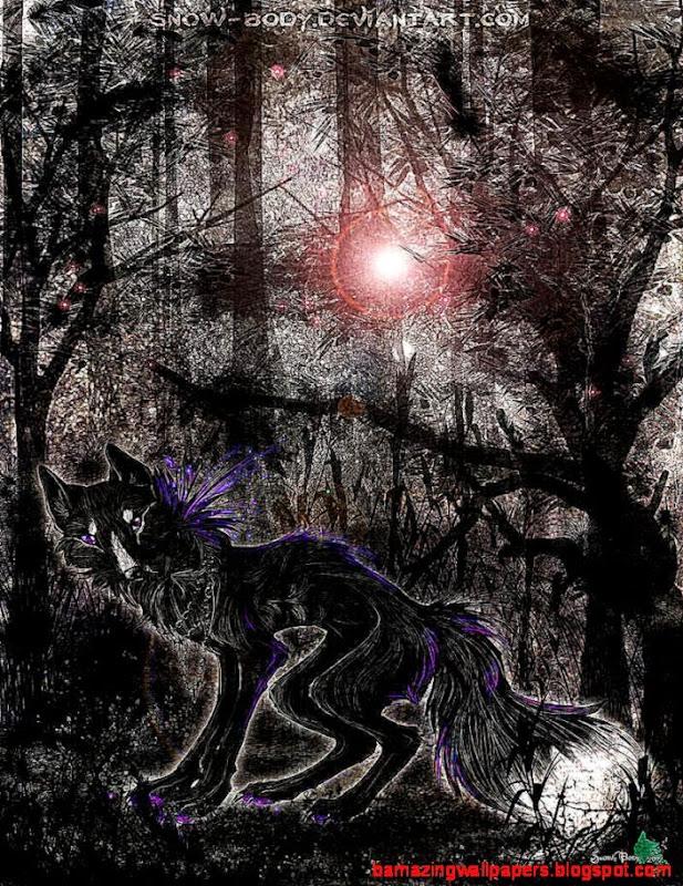 C a Beautiful dark Forest by Snow Body on DeviantArt