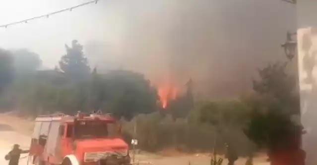 Μάρτυρας από τα πύρινα μέτωπα της Ζακύνθου: «Θα καιγόμασταν ζωντανοί» (βίντεο)