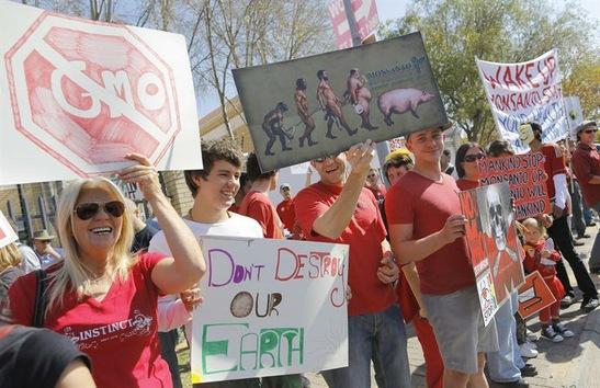 Marchas contra Monsanto por todo el mundo el 25 de Mayo 2013 Monsanto+Sudafrica