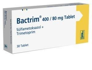 Can I Give My Dog Bactrim Antibiotic