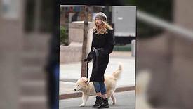 Le mannequin Suki Waterhouse sort le chien de son petit-ami Bradley Cooper