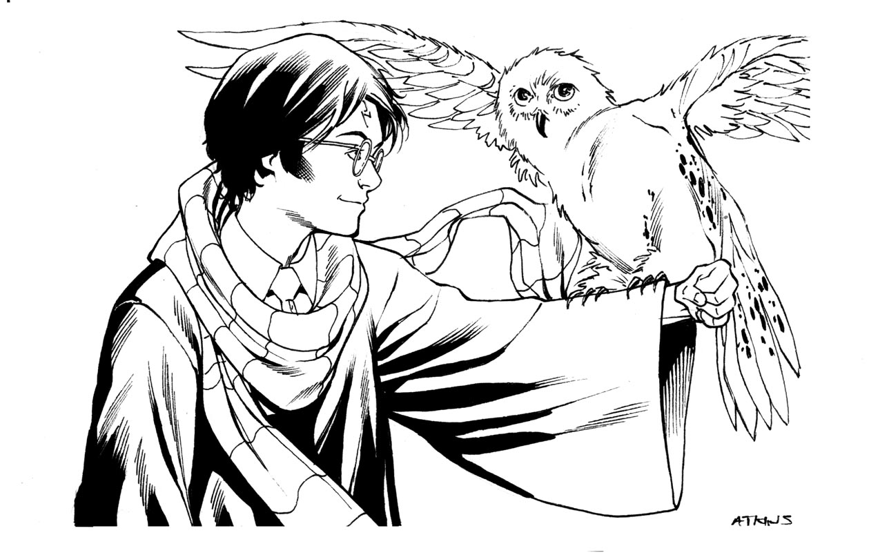 Harry Potter | Robert Atkins Art