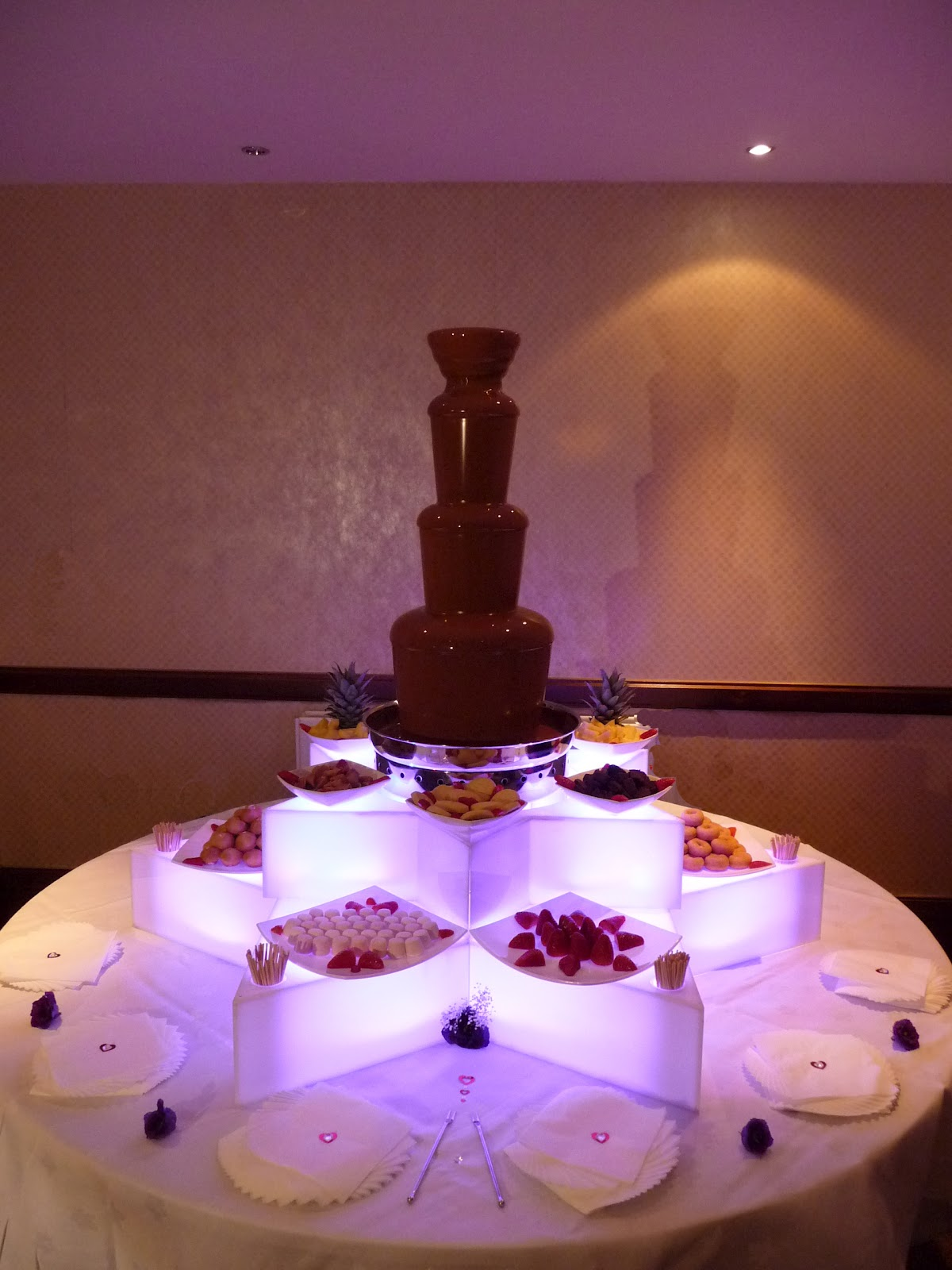 Chocolate Fountain Hire Winchester Ami & Kevin s Wedding