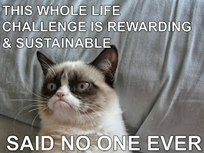 Grumpy Cat Whole Life Challenge