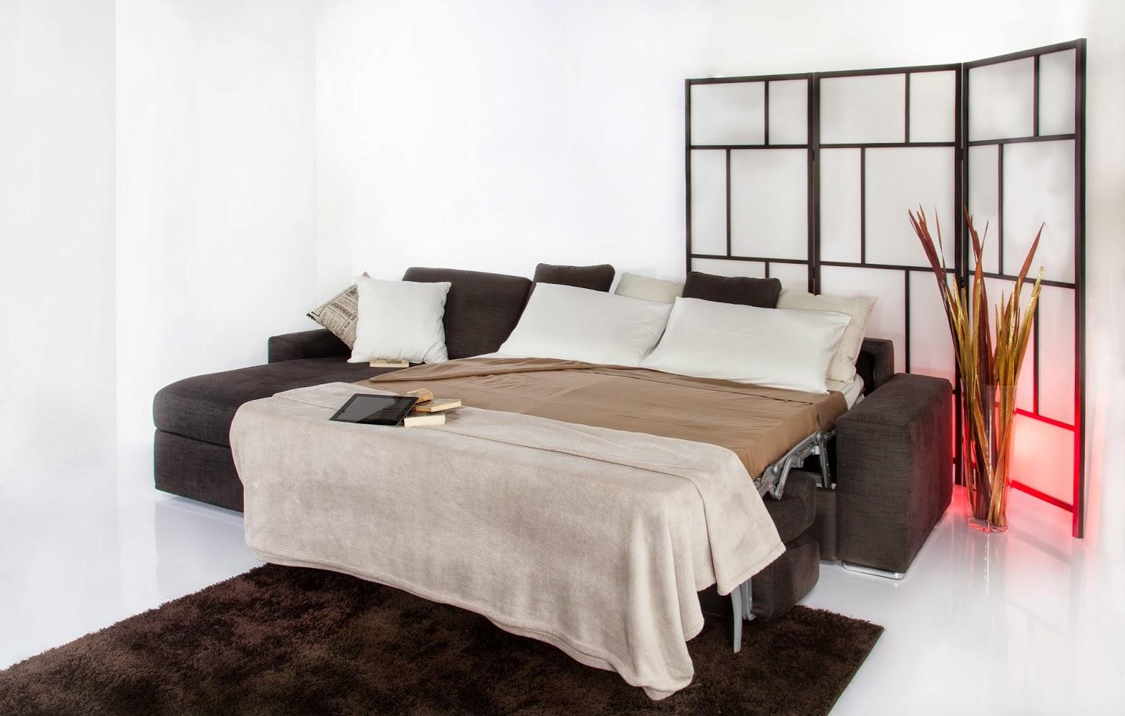Divani blog tino mariani 12 gennaio 2014 - Trasformare letto in divano ...