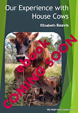 House cow ebook coming soon