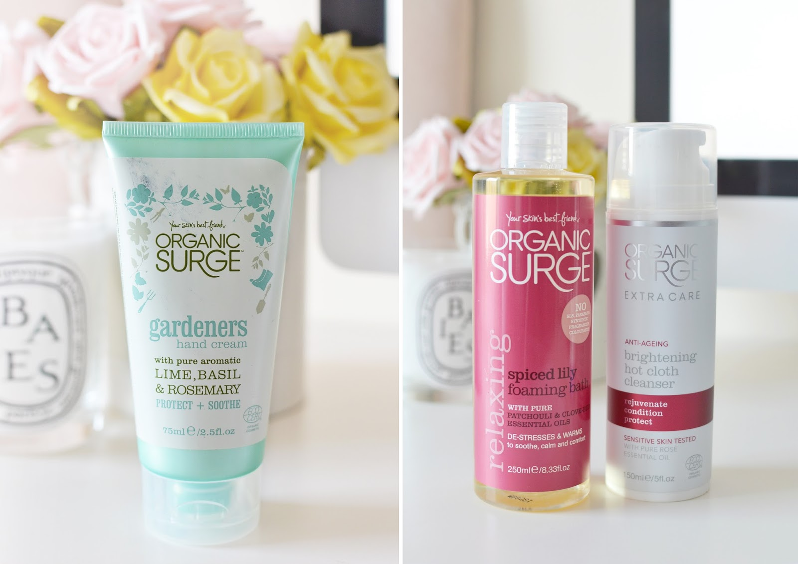 organic surge bloggers bundle, beauty products