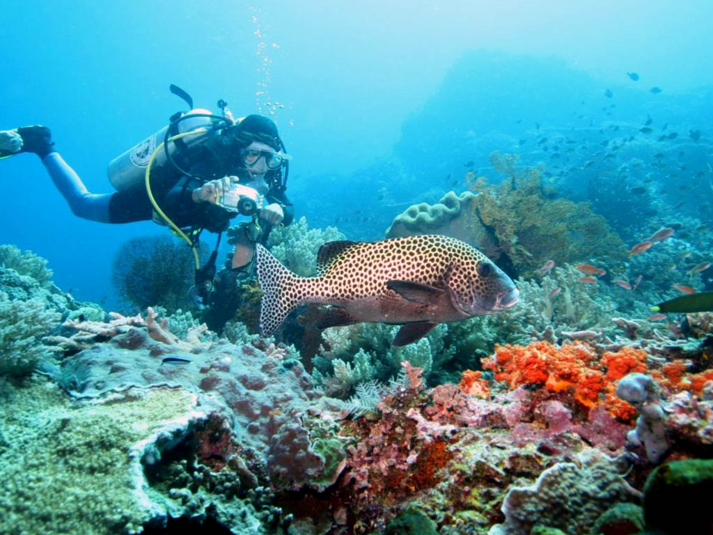 Wonderful Exotic Indonesia With Simply Tour 2015