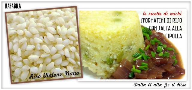 Riso Vialone Nano - Sformatini di Riso con Salsa alla Cipolla - Le Ricette di Michi