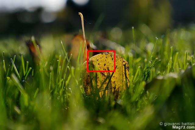 Fotografia realizzata con la Panasonic G6 e lo zoom Panasonic 12-35mm f/2.8