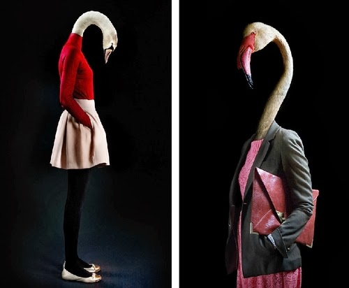 07-Swan-and-Flamingo-Miguel-Vallinas-Segundas-Pieles-Second-Skins-Smartly-Dressed-Animals-www-designstack-co