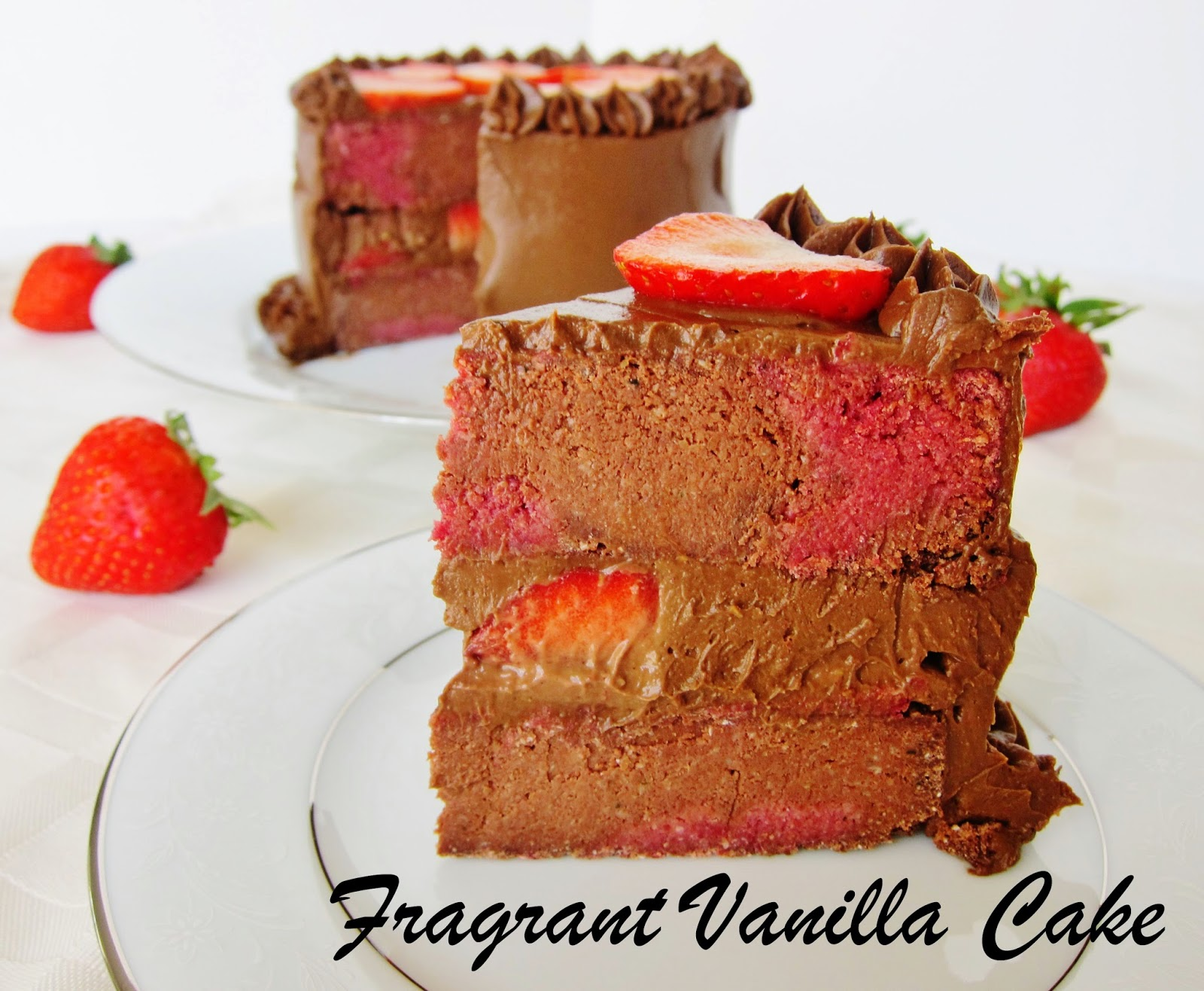 Raw Marbled Chocolate Strawberry Cake