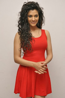Actress Saiyami Kher Pictures in Red Short Dress at Rey Movie Trailer Launch 0033