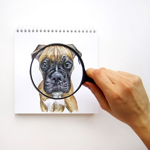 24-The-Evidence-Valerie-Susik-Валерия-Суслопарова-Cats-and-Dogs-Interactive-Animal-Drawings-www-designstack-co