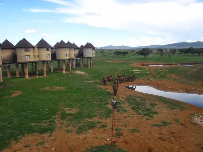 Situated in Tsavo West, Sarova Salt Lick Game Lodge is located 200km north-west of Mombasa in a 28000 acre protected area called the Taita Hills Wildlife Sanctuary