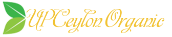 CEYLON ALBA CINNAMON
