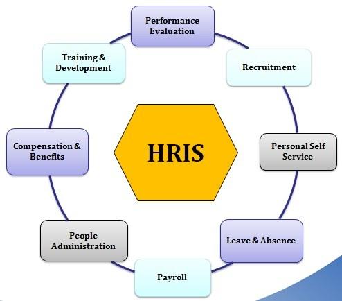 Edi Diwan Human Resource Information System Hris