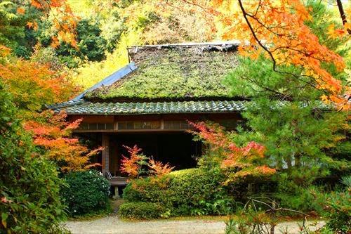 滝口寺(たきぐちでら)