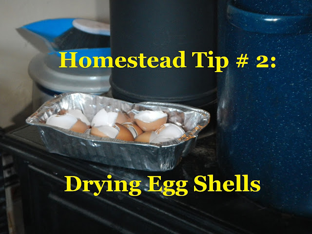 Homestead Tip # 2 Video