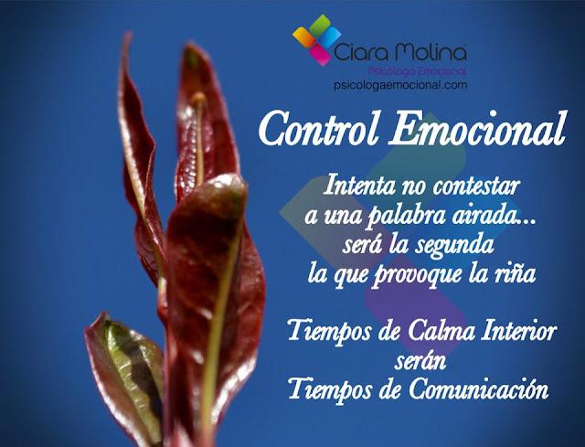 REFLEXION CONTROL EMOCIONAL