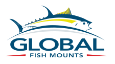 review global fish mounts fishing southwest florida