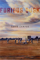 Cover image of Furious Dusk by David Campos