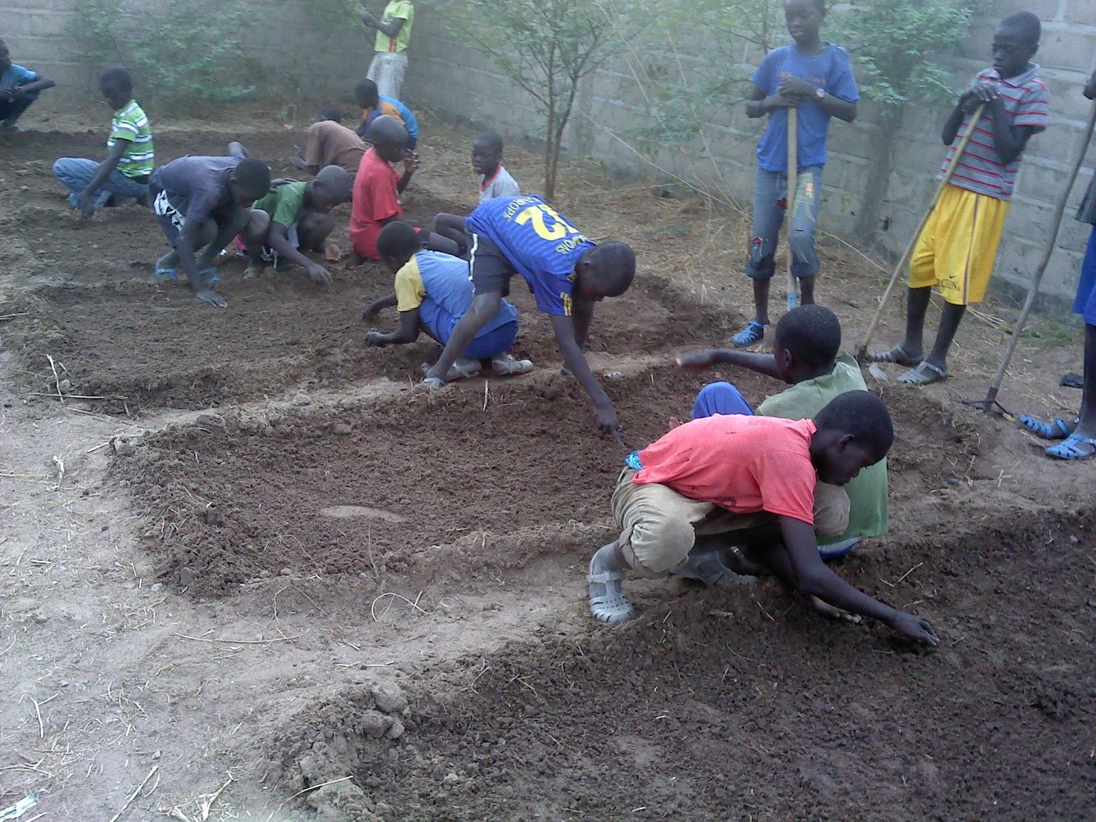 Abdou sambou planificateur ief mbour 2 am nagement du for Planificateur jardin