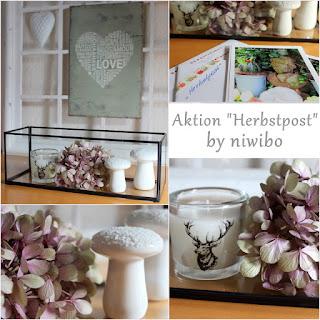 http://niwibo.blogspot.de/2015/09/neue-herbstaktion-und-ewiger-sommer.html