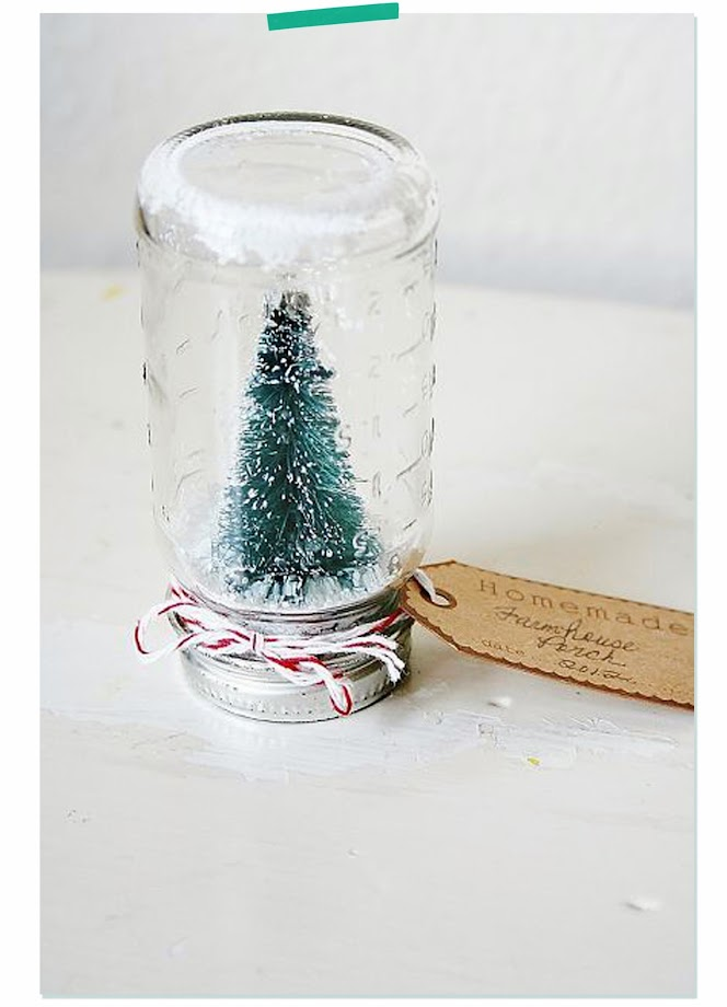 photo-bottle-brush-trees-jar