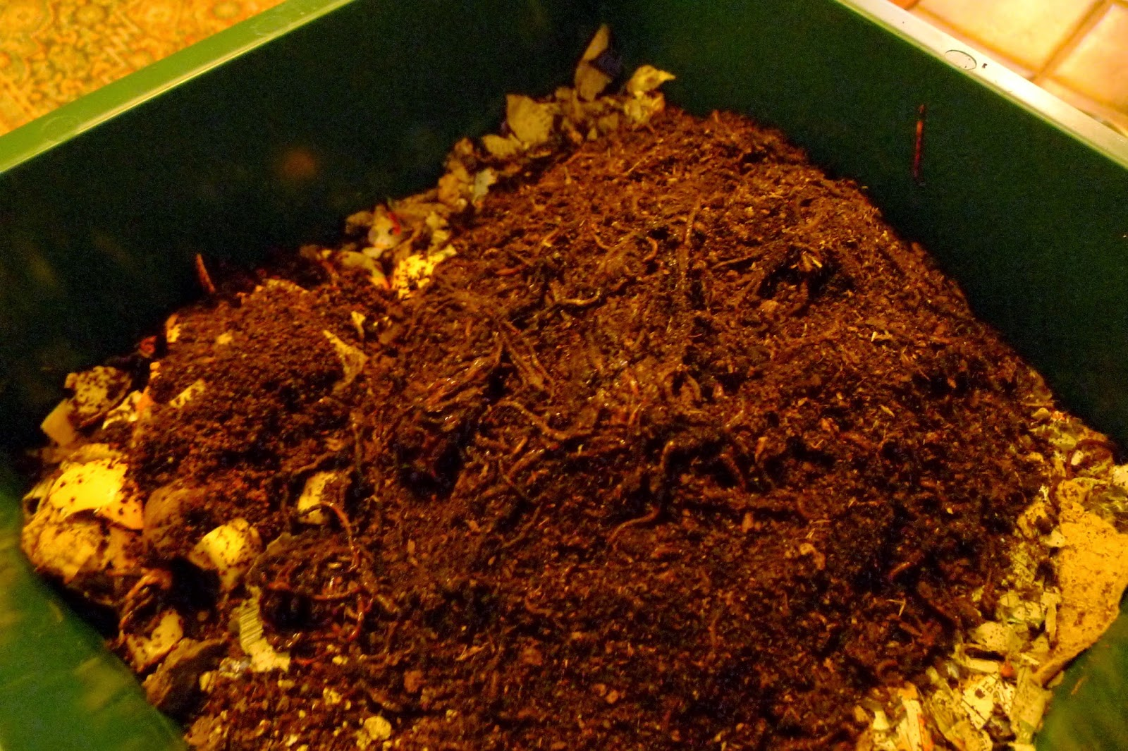 Vermiculture: a compost solution for urban gardens