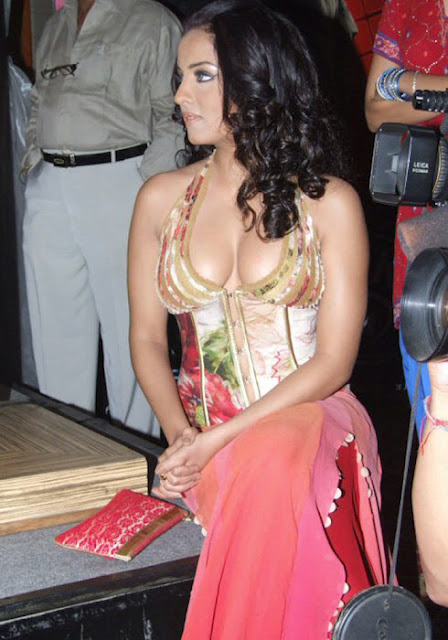 Celina Jaitley Deep Cleavage Photos