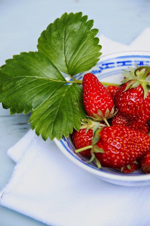 Rezepte mit Erdbeeren, Erdbeeren vom Balkon