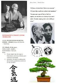 Entrenamiento conjunto de Aikido