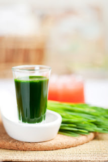 Shot of wheatgrass