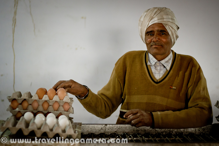 During Christmas vacations I visited Rajpura (a town in Punjab, India) with my friend, who was visiting one of his clients for some official purpose. We exactly went to a company called 'Punjab Eggs', which is one of the decent Egg producers of Punjab with main focus on nutrition. Here we are not going to share the technicalities involved, but a Photo Journey to a  Punjab Eggs Farm. Let's check it out.. It was Monday, when I was in Chadigarh and my friend called me to get ready for Rajpura, which is a relatively small town in Punjab. It took approximately 1 Hr to reach the place. We had to meet Mr. Mohit Raja, which is one of the partner in Punjab Eggs. Naresh(my friend) had official meeting with Mohit, who is also managing some other companies in Rajpura RegionPunjab Eggs is a brand of Raja Farms and one of the good quality product in North India, (as I got to know from this visit...) There are different types of eggs distributed by Peggs, depending upon the nutrition value. Different packing are used after automatic identification of different types of eggs.Cleanness and discipline is one of the main demand of such poltery farms. Cars are not allowed to come inside the campus. In worst case, if any vehicle need to come inside this huge farm, there is a track full of water, so that tyres and lower part of the vehicle is cleaned before it actually enters that campus. If someone comes inside, some solution is sprayed on shoes.Above photograph shows the preparations one need to do, before entering into the space where hens are kept under controlled temperature. A mask, cap & shoe cover etc.Here is the first view after entering into the poultry farm and this whole setup was constructed in consultation with an Europian company. Things like, space (width, height, length), Air conditioning systems, alignment of exhaust fan, unit for automatically collection eggs, cleanness of  each compartment, machines for providing feeds etc were designed in such a way that everything c