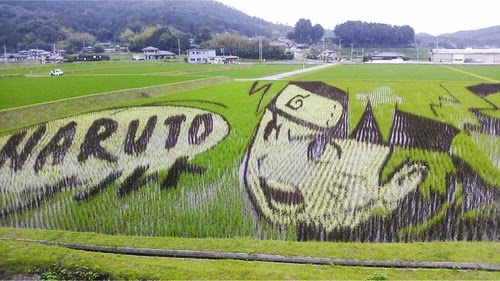 09-Tanbo-Art-Naruto-Japanese-Rice-Paddy-Farmers-www-designstack-co