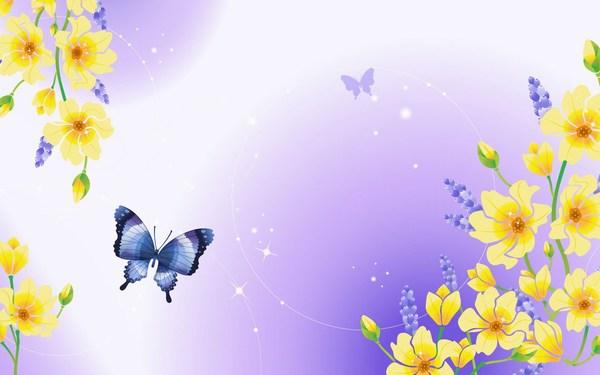 Best Butterfly Wallpaper HD
