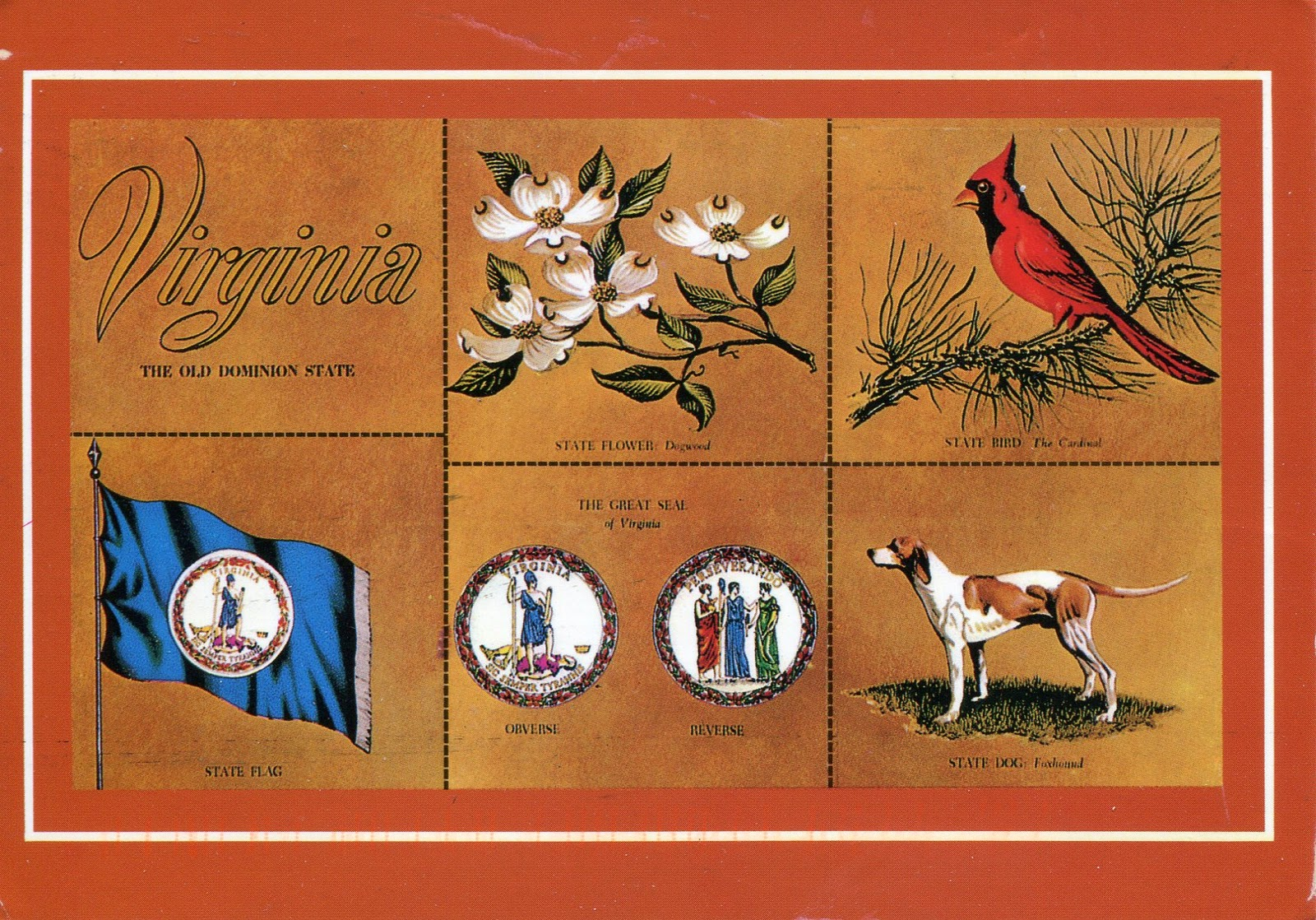 Of symbols and schooling postally yours all the states in the us have a state flag flower great seal and most have a state bird but only eleven have a state dog virginias is a american buycottarizona Images