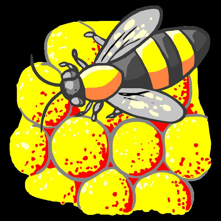 SERBUK SARI LEBAH - 蜂花粉 - Fēng huāfěn - Bee Pollen