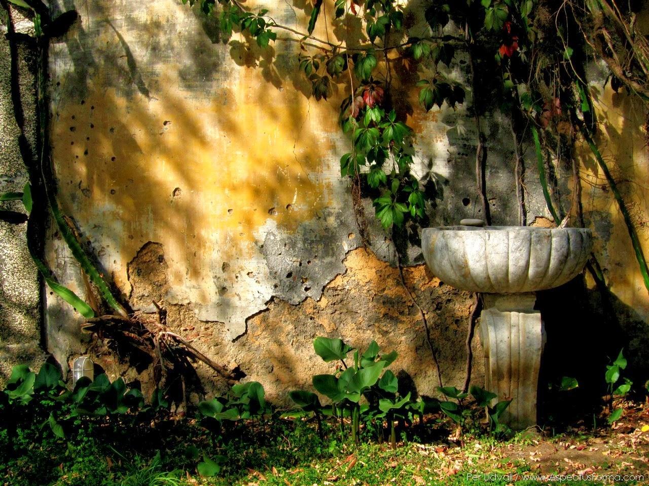 LEUFSTA 3 SOUTH: Azienda Trinita, a Sicilian Garden of Eden