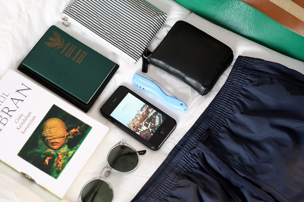 PEPSODENT TRAVEL SMART BY HERDIANA SURACHMAN DELUXSHIONIST INDONESIA LIFESTYLE AND FASHION BLOG