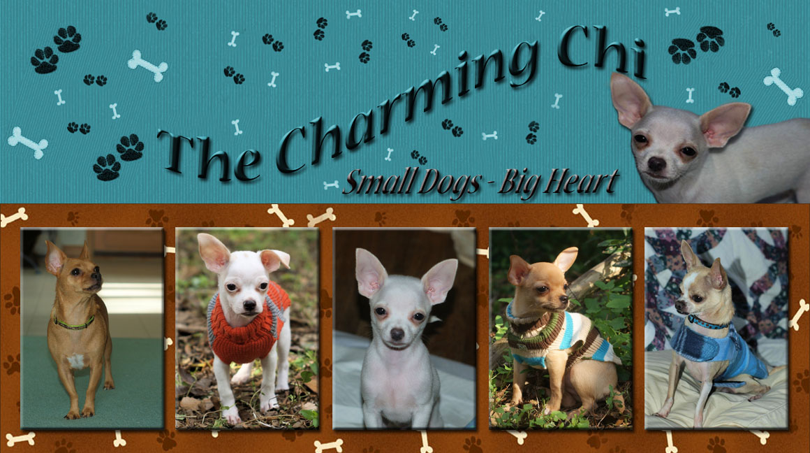 The Charming chi