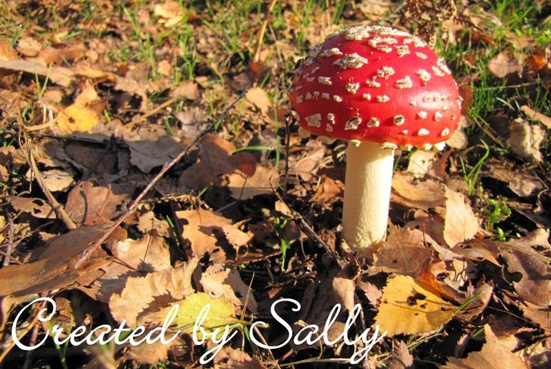 Cinnamon Sally Designs