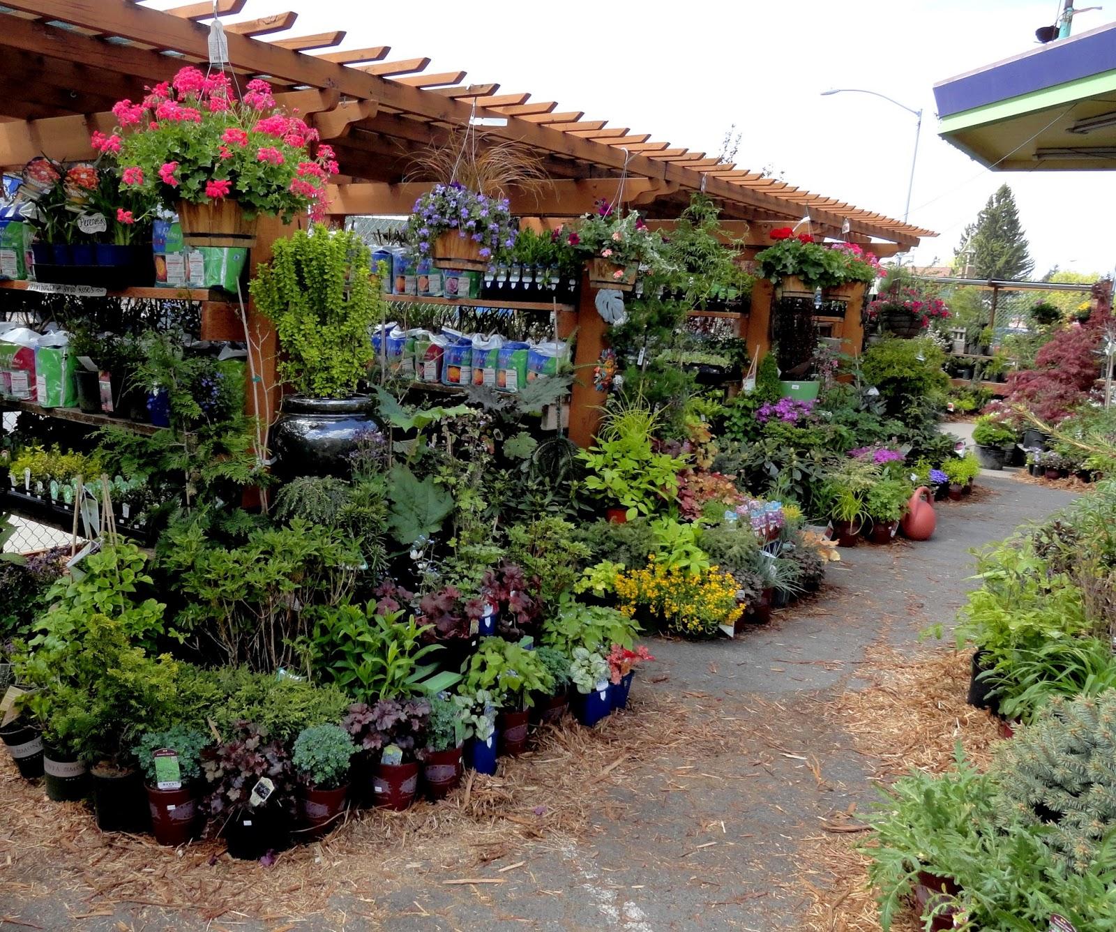 danger garden: A gas-station nursery in Spokane, WA…
