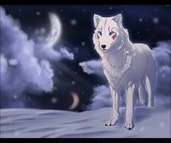 Tsuki~Snow Wolf Form